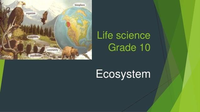Life science Grade 10 Ecosystem