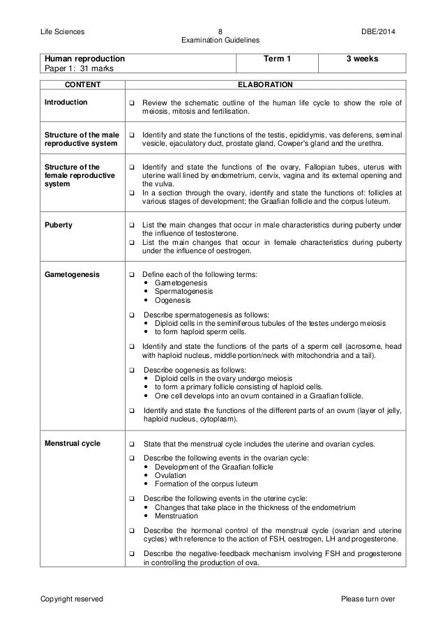 grade 8 social science exam papers Caps worksheets for grade 8 history revision, assessments, mock exam papers & memos free downloadable worksheets & answers for teachers & parents.