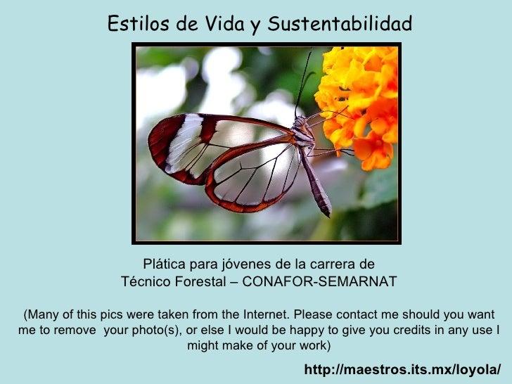 http://maestros.its.mx/loyola/ Estilos de Vida y Sustentabilidad Plática para jóvenes de la carrera de Técnico Forestal – ...