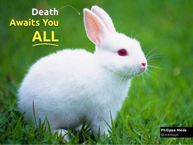 Death Awaits You  ALL http://www.google.fr/imgres? http://i client=safari&sa=X&rls=en&biw=1436&bih=803&tbm=isch&tbnid=zcj ...