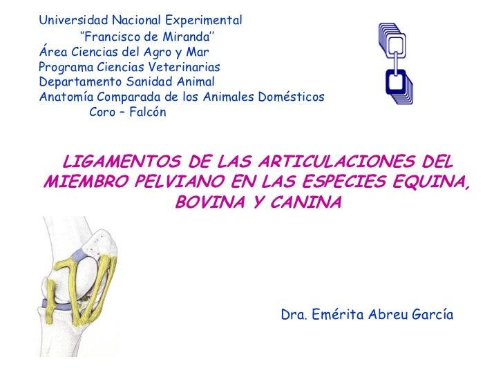 Universidad Nacional Experimental      ''Francisco de Miranda''Área Ciencias del Agro y MarPrograma Ciencias VeterinariasD...