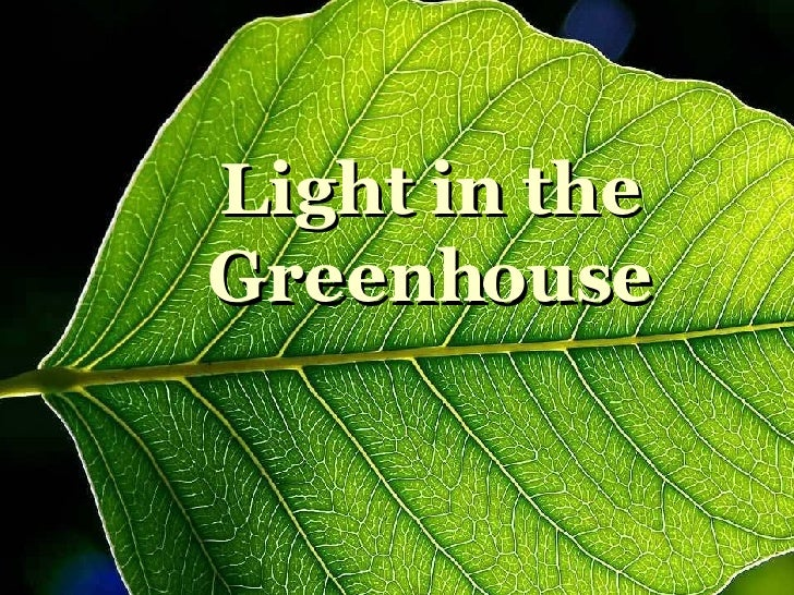 Light in the Greenhouse