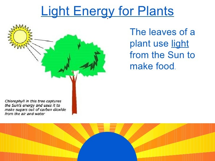 Examples Of Light Energy Light Energy The 13 Types Of