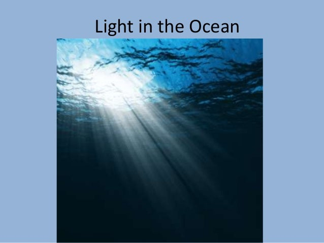 Light in the ocean