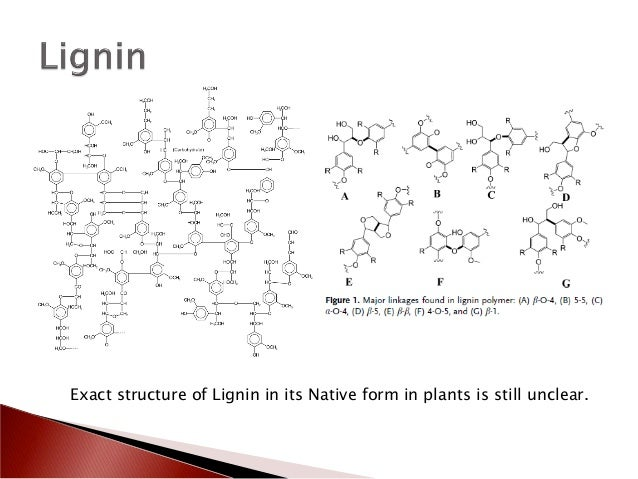 how to break the cellulose lignin bond