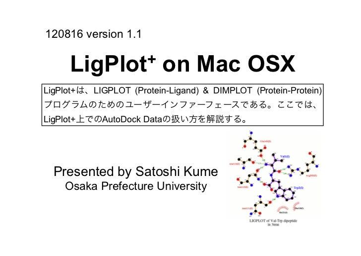 Ligplot+_japanese_ver.1.1
