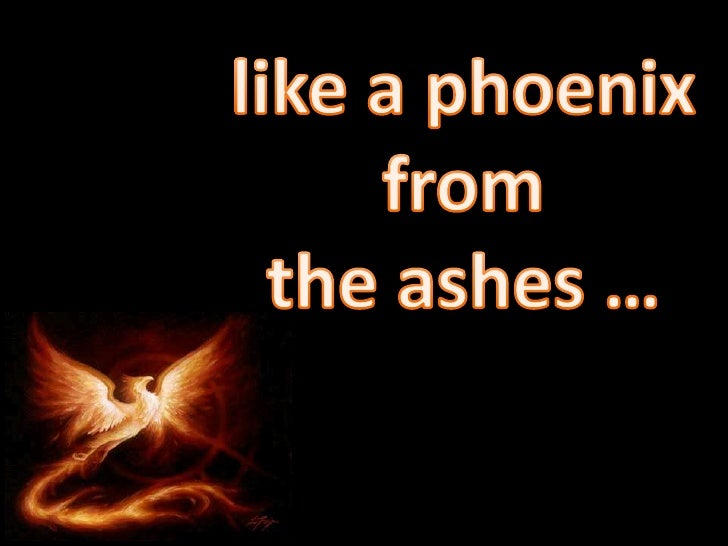 like a phoenix from <br />the ashes …<br />