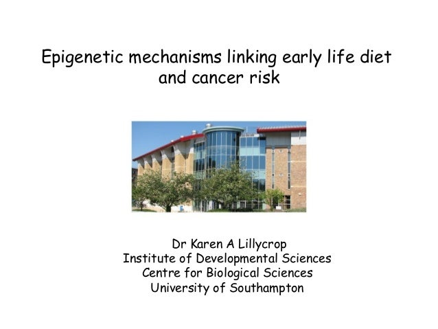 Epigenetic mechanisms linking early life dietand cancer riskDr Karen A LillycropInstitute of Developmental SciencesCentre ...