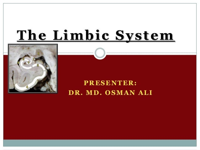 The Limbic System  PRESENTER: DR. MD. OSMAN ALI