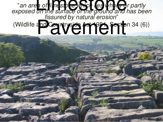 "Limestone Pavement  ""an area of limestone which lies wholly or partly exposed on the surface of the ground and has been fi..."