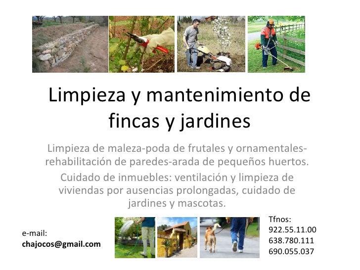 Limpieza y mantenimiento de fincas y jardines - Mantenimiento de jardines ...