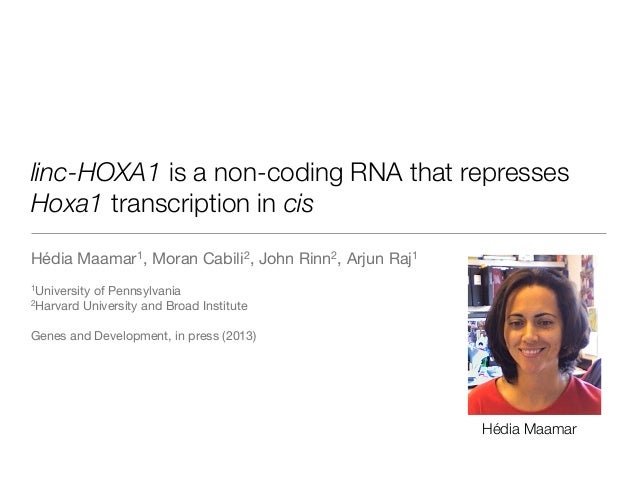 linc-HOXA1 is a non-coding RNA that repressesHoxa1 transcription in cisHédia Maamar1, Moran Cabili2, John Rinn2, Arjun Raj...