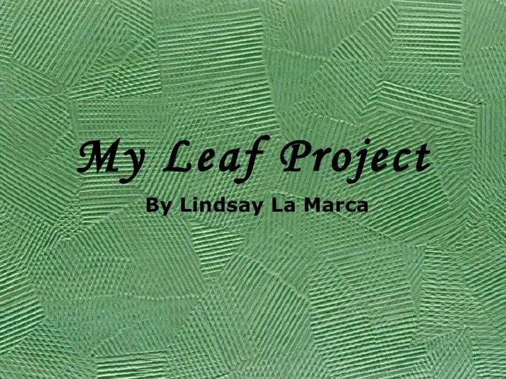My Leaf Project By Lindsay La Marca