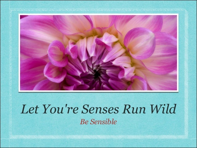 Let Youre Senses Run Wild         Be Sensible