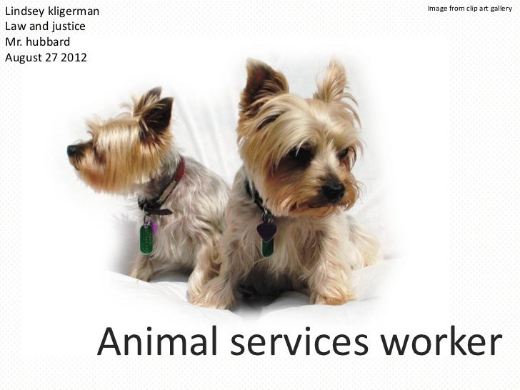Lindsey k period 7 animal services worker