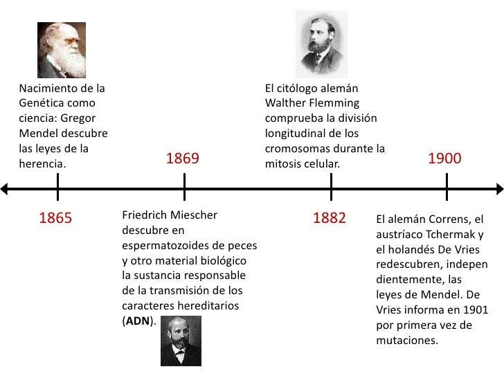 Nacimiento de la Genética como ciencia: Gregor Mendel descubre las leyes de la herencia.<br />El citólogo alemán Walther F...