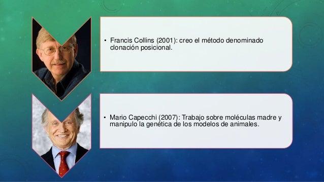Linea De Tiempo Sobre El Desarrollo Y Evolucion Del ...