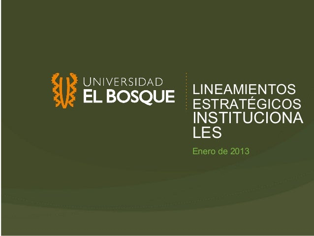 LINEAMIENTOSESTRATÉGICOSINSTITUCIONALESEnero de 2013
