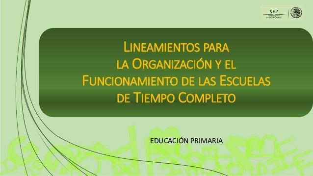 LINEAMIENTOS PARA LA ORGANIZACIÓN Y EL FUNCIONAMIENTO DE LAS ESCUELAS DE TIEMPO COMPLETO EDUCACIÓN PRIMARIA
