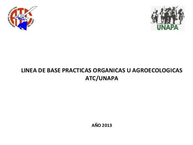 LINEA DE BASE PRACTICAS ORGANICAS U AGROECOLOGICAS ATC/UNAPA AÑO 2013