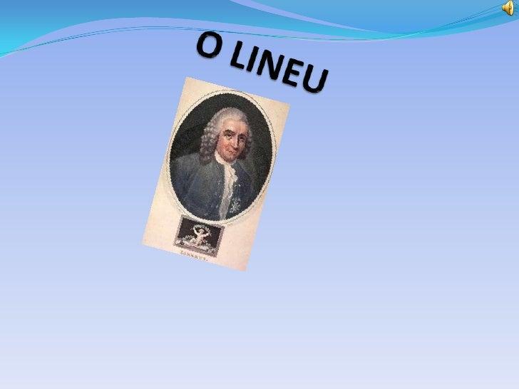 O LINEU<br />