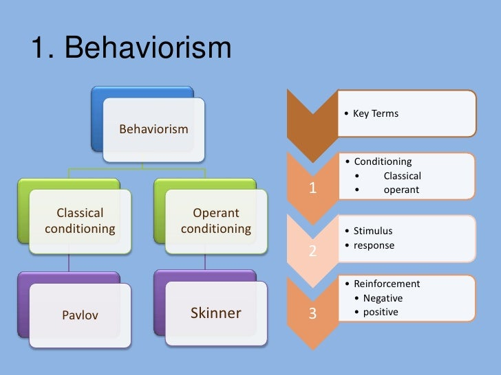 behaviorist and innatist Thus behaviorist theory has the view that human  response, and silent way  represent the behaviorist view of  the innatist perspective.