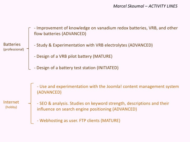 Marcel Skoumal – ACTIVITY LINES<br /><ul><li> Improvement of knowledge on vanadium redox batteries, VRB, and other flow ba...