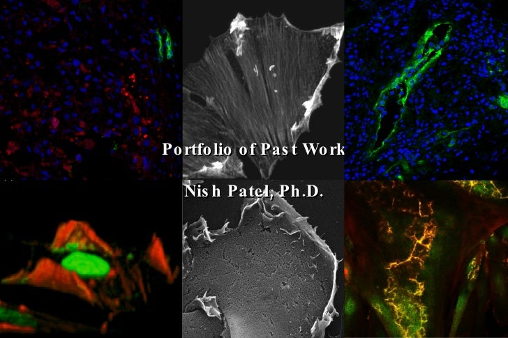 Portfolio of Past Work Nish Patel, Ph.D.