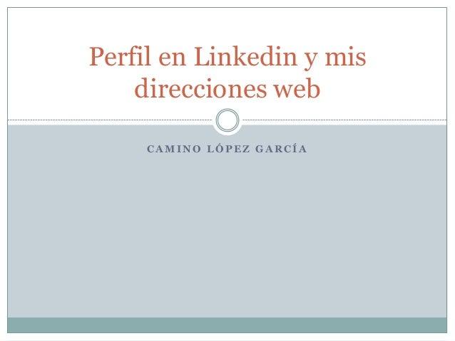 Perfil en Linkedin y mis    direcciones web     CAMINO LÓPEZ GARCÍA