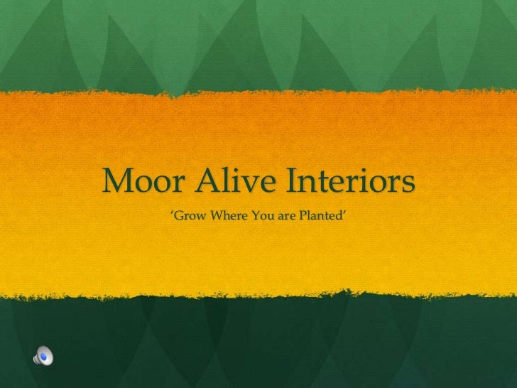Moor Alive Interiors<br />'Grow Where You are Planted'<br />