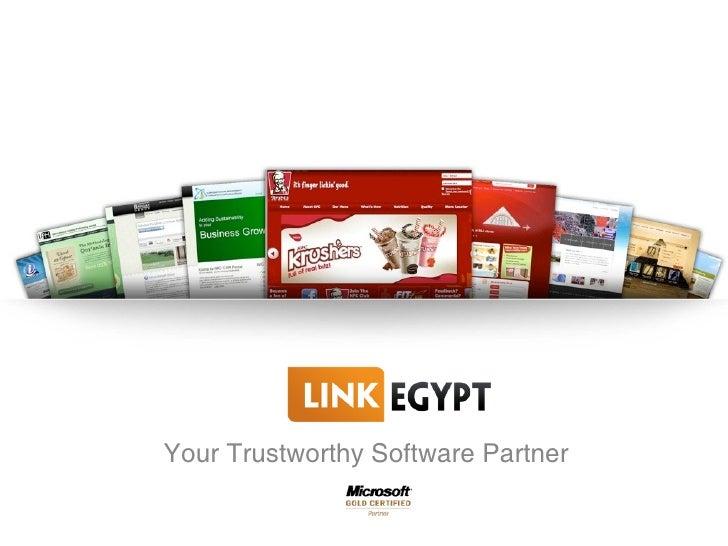Link Egypt Profile