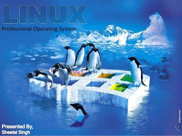 Professional Operating System