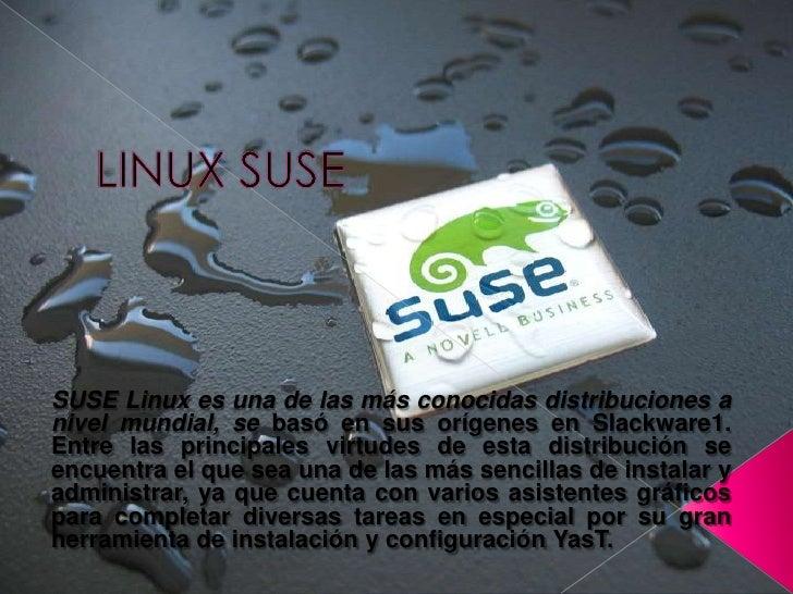 LINUX SUSE<br />SUSE Linux es una de las más conocidas distribuciones a nivel mundial, se basó en sus orígenes en Slackwar...