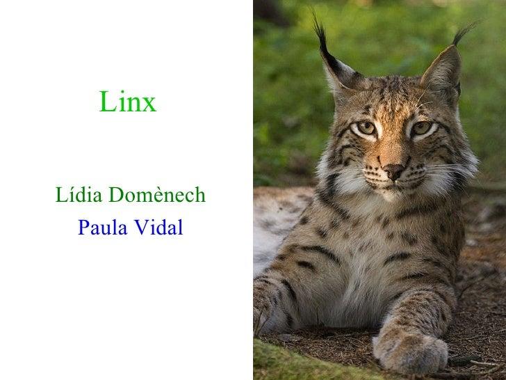 Linx Lídia Domènech Paula Vidal