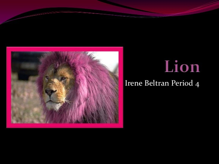 Irene Beltran Period 4