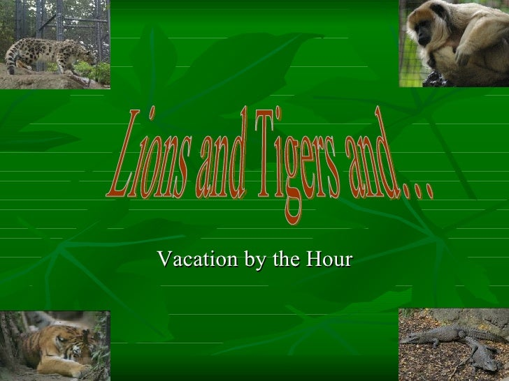 Vacation by the Hour Lions and Tigers and…
