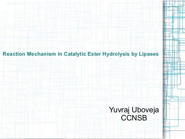 Reaction Mechanism in Catalytic Ester Hydrolysis by Lipases Yuvraj Uboveja CCNSB