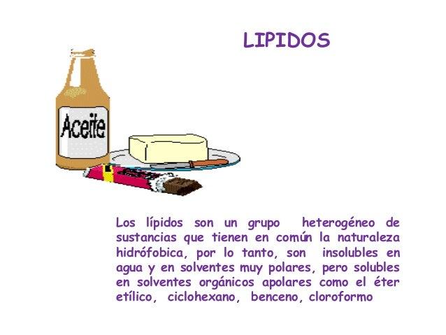 LIPIDOSLos lípidos son un grupo      heterogéneo desustancias que tienen en común la naturalezahidrófobica, por lo tanto, ...