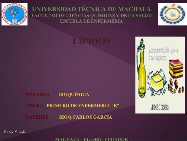 UNIVERSIDAD TÉCNICA DE MACHALA FACULTAD DE CIENCIAS QUÍMICAS Y DE LA SALUD ESCUELA DE ENFERMERÍA  LÍPIDOS  MATERIA:  BIOQU...