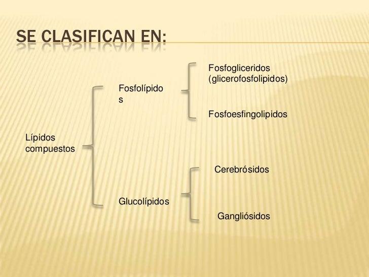 tipos de esteroides wikipedia