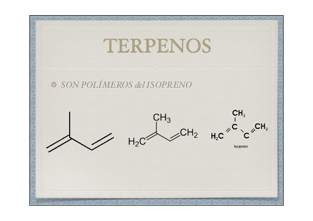 los esteroides lipidos