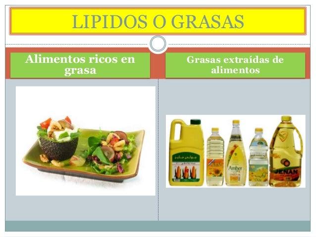 LIPIDOS O GRASAS Alimentos ricos en grasa  Grasas extraídas de alimentos