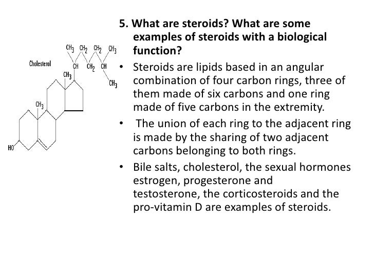 Examples Of Steroids Lipids Mr Olympia Steroid