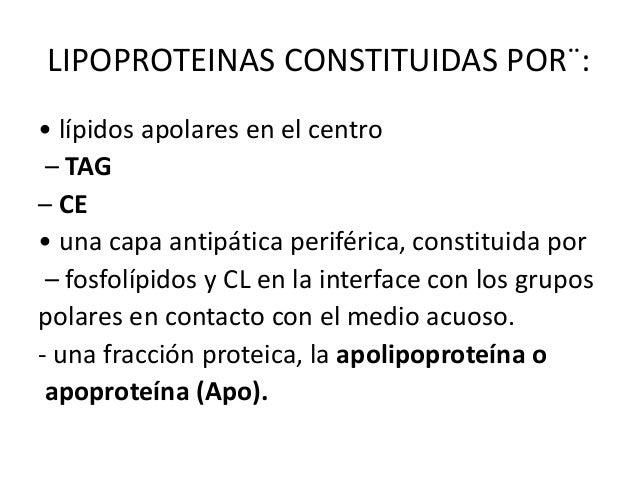 LIPOPROTEINAS CONSTITUIDAS POR¨: • lípidos apolares en el centro – TAG – CE • una capa antipática periférica, constituida ...