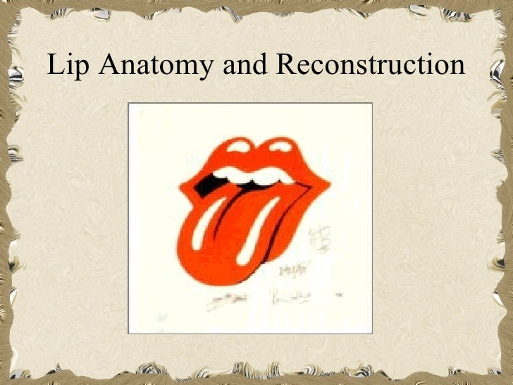 Lip Anatomy and Reconstruction