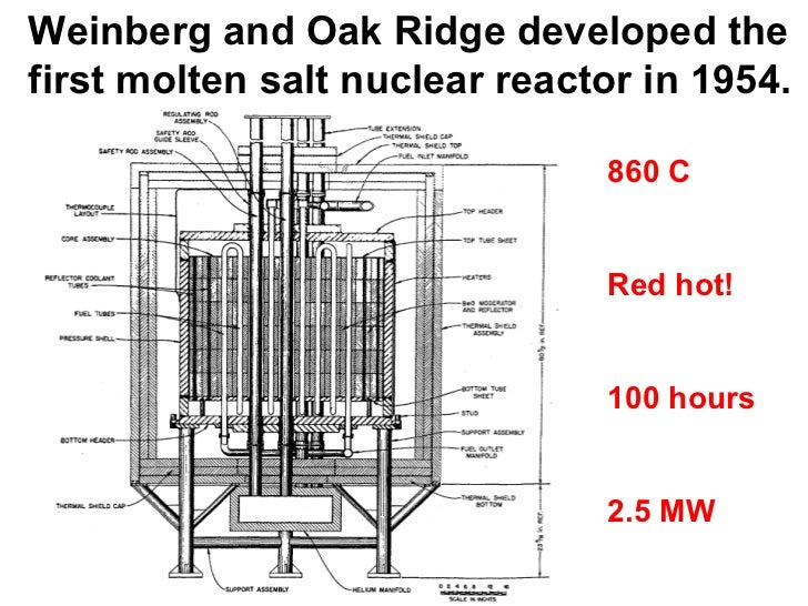 Liquid Fuel Nuclear Reactors