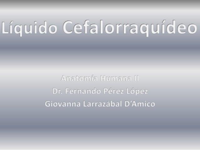 Liquido Cefalorraquídeo (LCR)