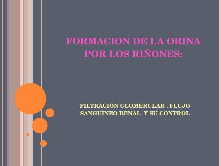 FORMACION DE LA ORINA POR LOS RIÑONES: <ul><li>FILTRACION GLOMERULAR , FLUJO SANGUINEO RENAL  Y SU CONTROL </li></ul>