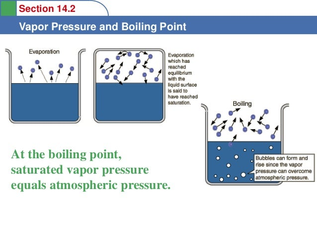 vapor pressure and boiling point relationship goals