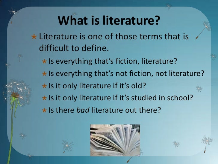 literature is everything essay